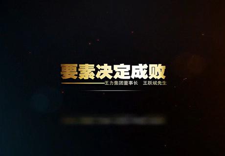 2014王力集團宣傳片高清品牌價值修改版