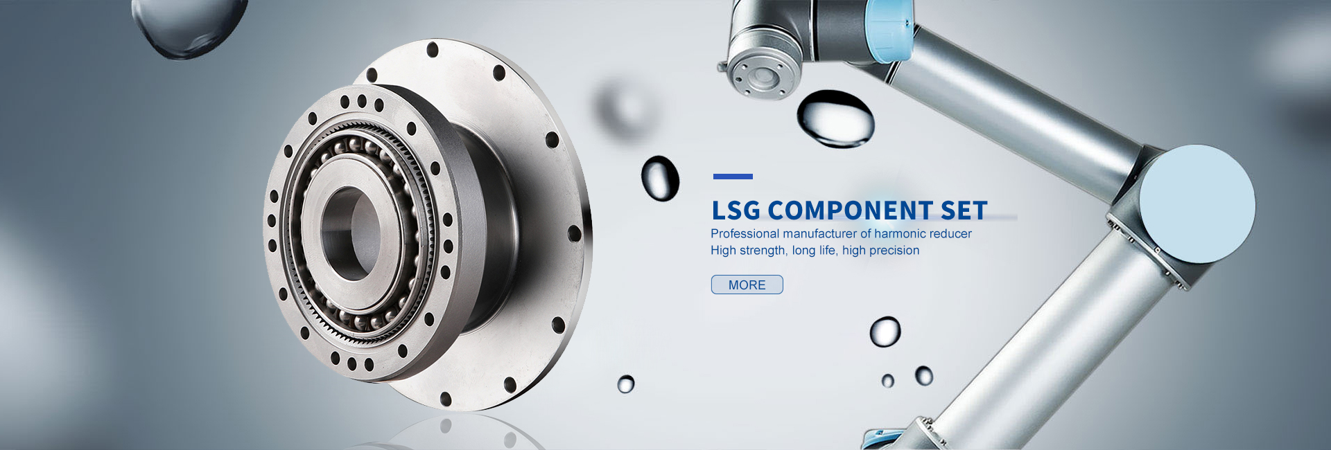 LSG(Component)