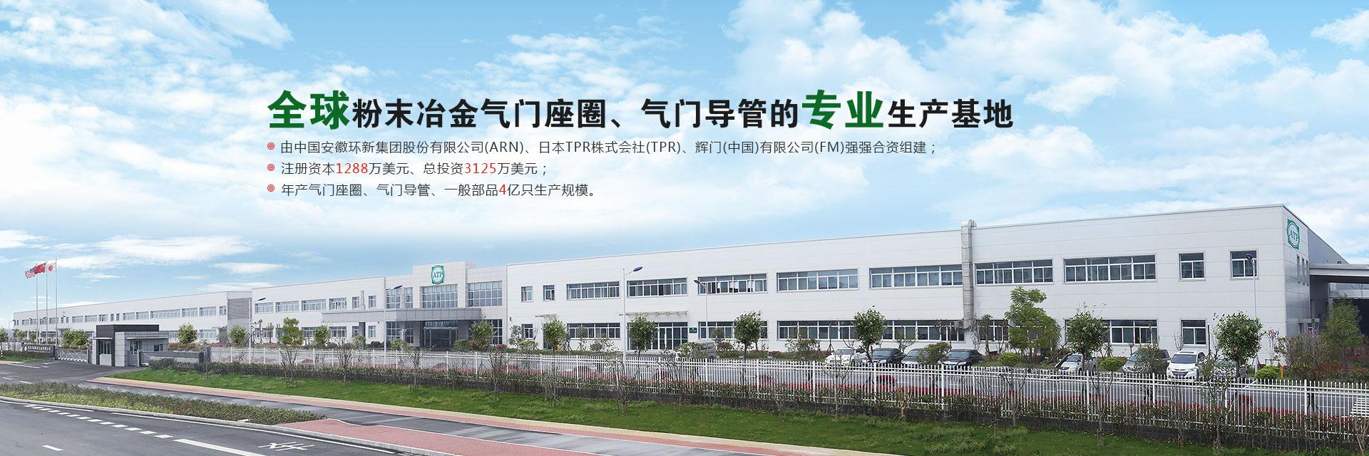 安慶帝伯粉末冶金有限公司