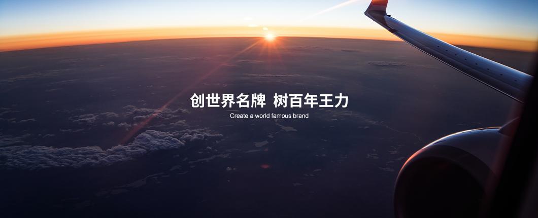 中國王力集團有限公司