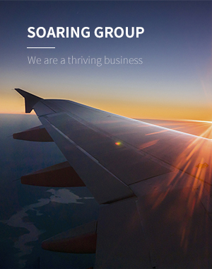 SOARING GROUP